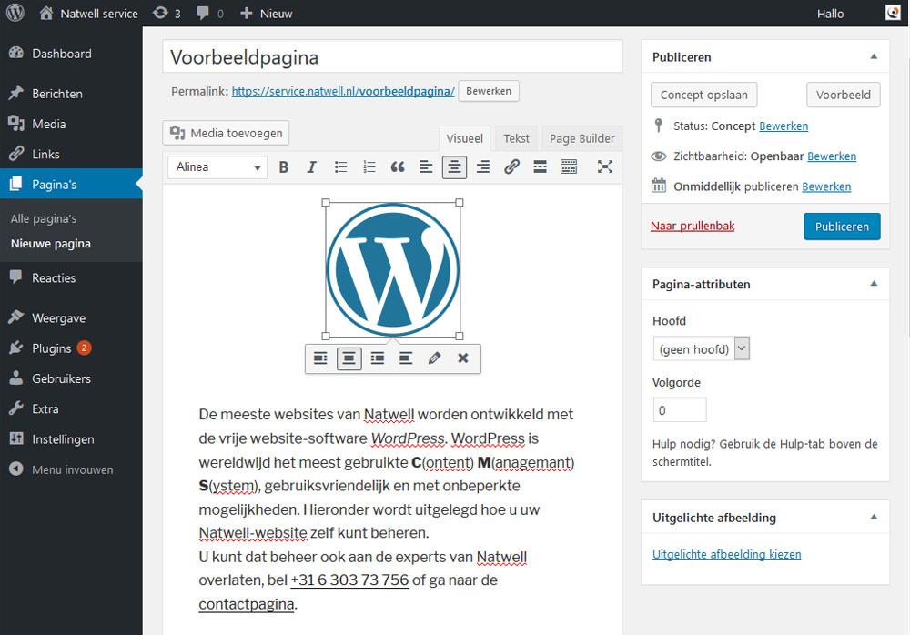 Erjon Webdesign wordpress cms paginas berichten
