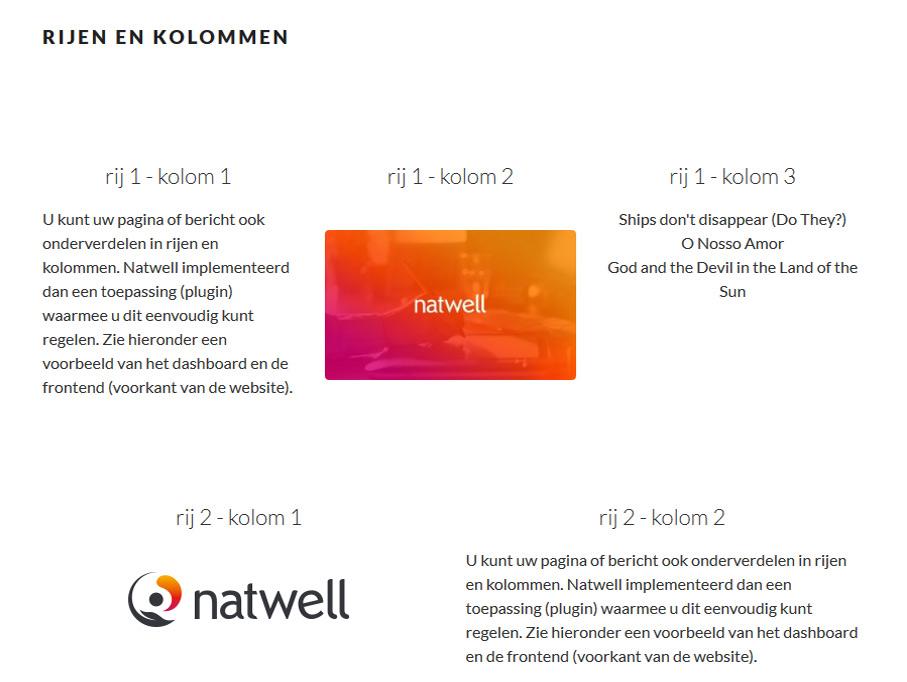 Erjon Webdesign rijen en kolommen frontend